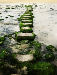 stepping stones on the beach