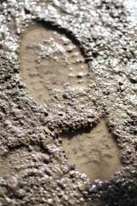 mud shoe boot print